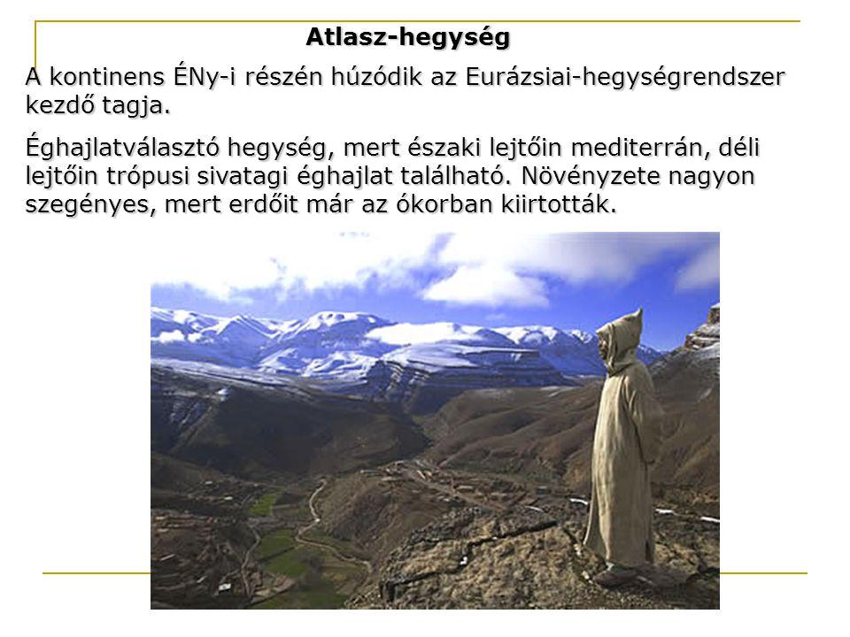 Atlasz-hegység A kontinens ÉNy-i részén húzódik az Eurázsiai-hegységrendszer kezdő tagja.
