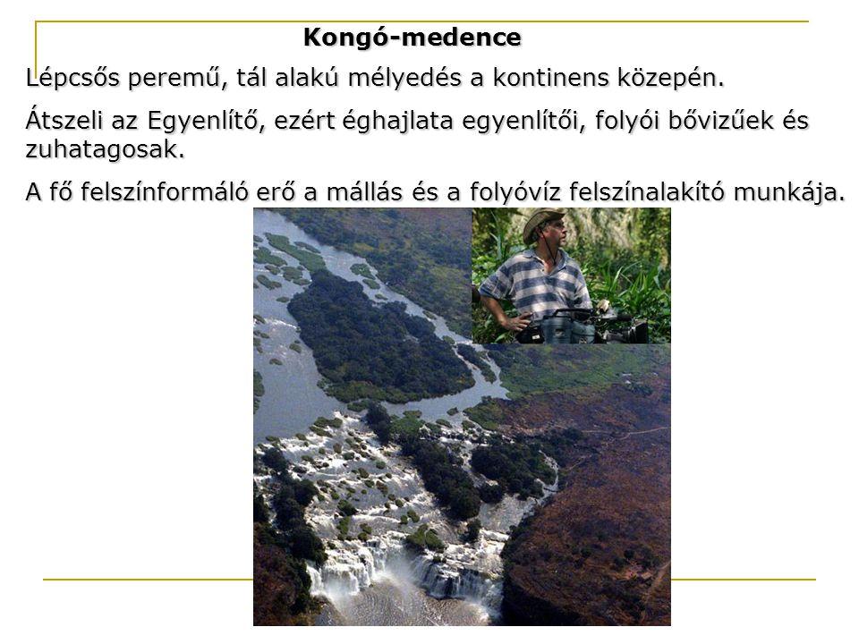 Kongó-medence Lépcsős peremű, tál alakú mélyedés a kontinens közepén.