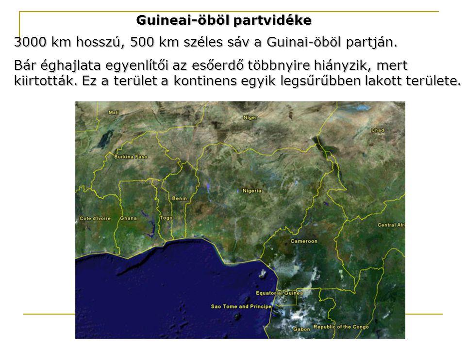 Guineai-öböl partvidéke
