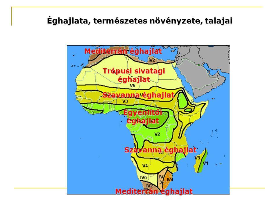 Éghajlata, természetes növényzete, talajai Trópusi sivatagi éghajlat