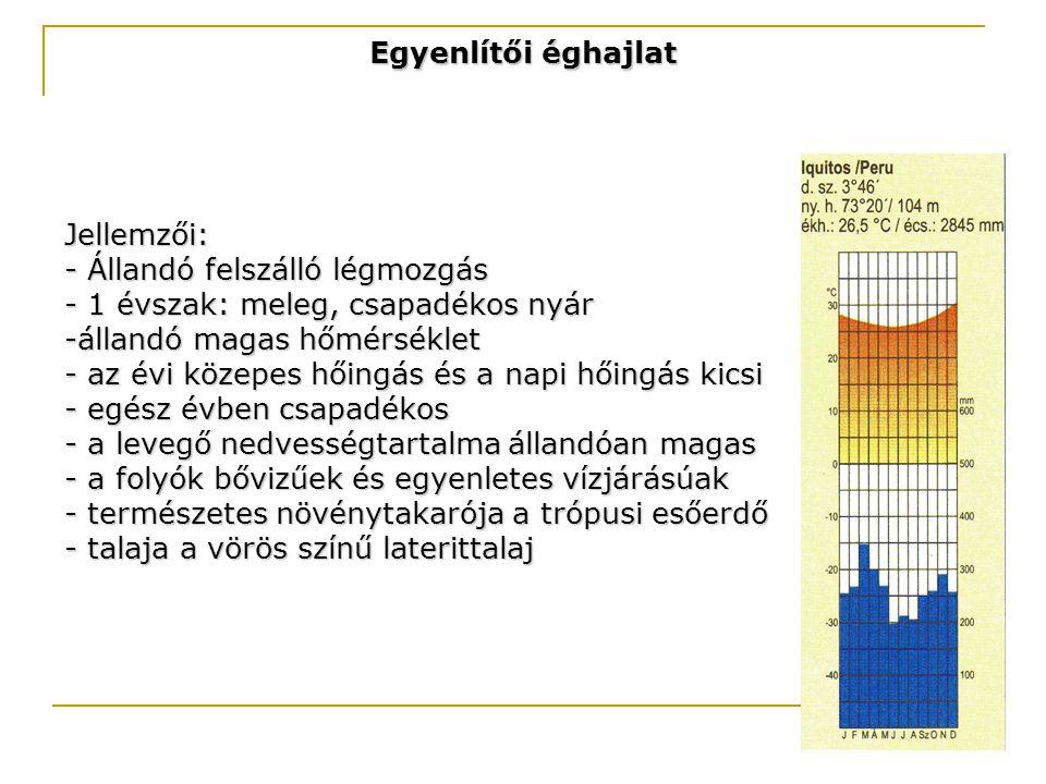 Egyenlítői éghajlat Jellemzői: - Állandó felszálló légmozgás. - 1 évszak: meleg, csapadékos nyár.