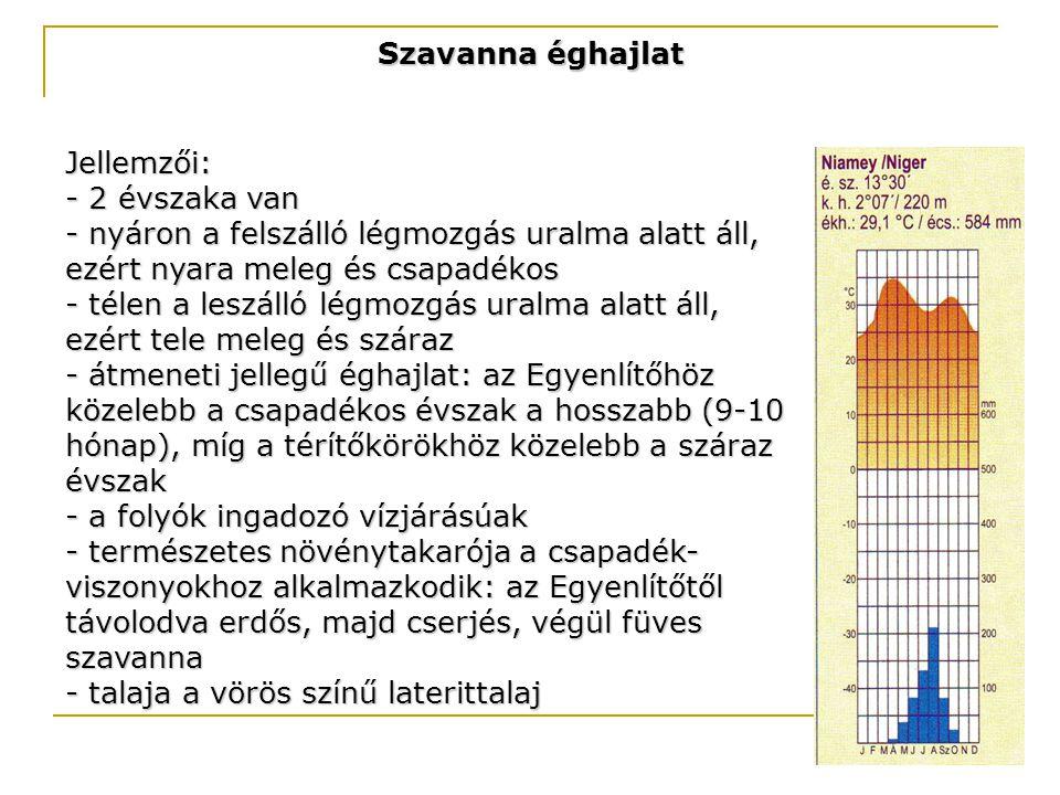 Szavanna éghajlat Jellemzői: - 2 évszaka van. - nyáron a felszálló légmozgás uralma alatt áll, ezért nyara meleg és csapadékos.