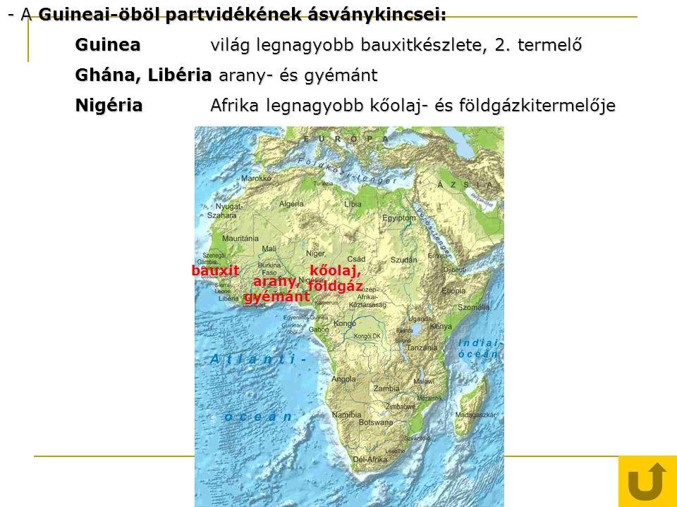- A Guineai-öböl partvidékének ásványkincsei: