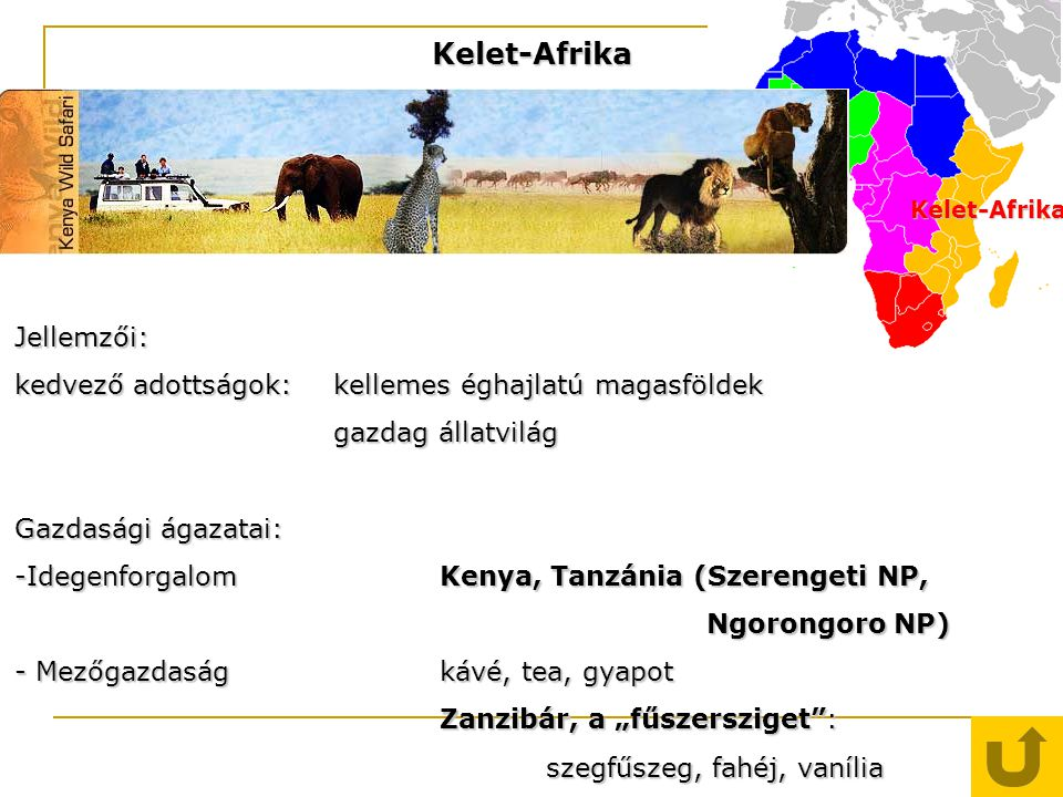 Kelet-Afrika Jellemzői: