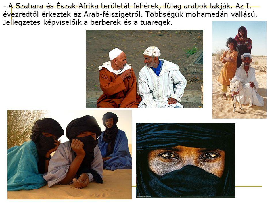 - A Szahara és Észak-Afrika területét fehérek, főleg arabok lakják