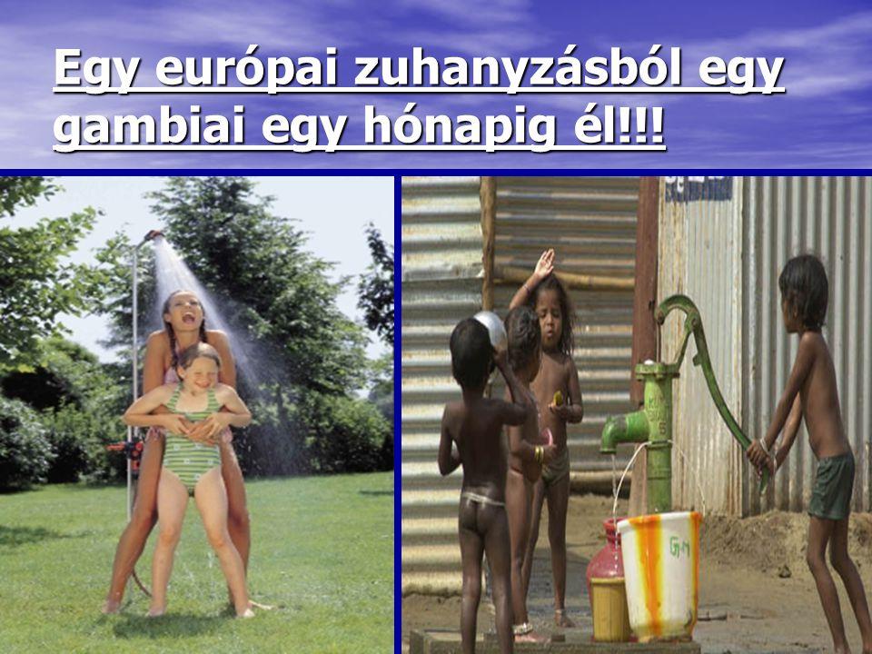 Egy európai zuhanyzásból egy gambiai egy hónapig él!!!