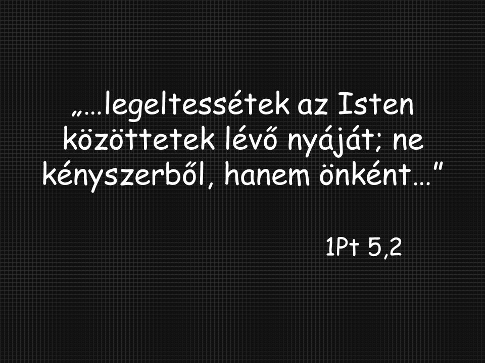 """""""…legeltessétek az Isten közöttetek lévő nyáját; ne kényszerből, hanem önként… 1Pt 5,2"""