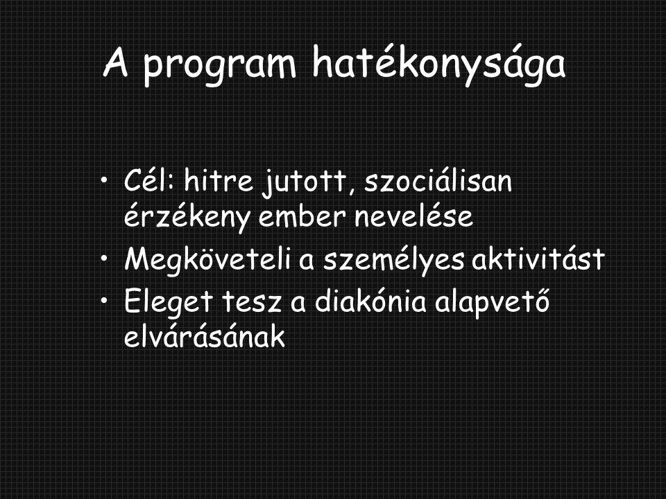 A program hatékonysága