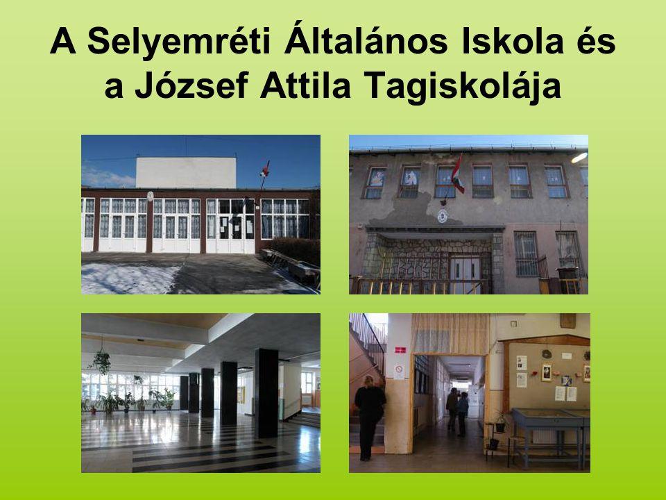 A Selyemréti Általános Iskola és a József Attila Tagiskolája