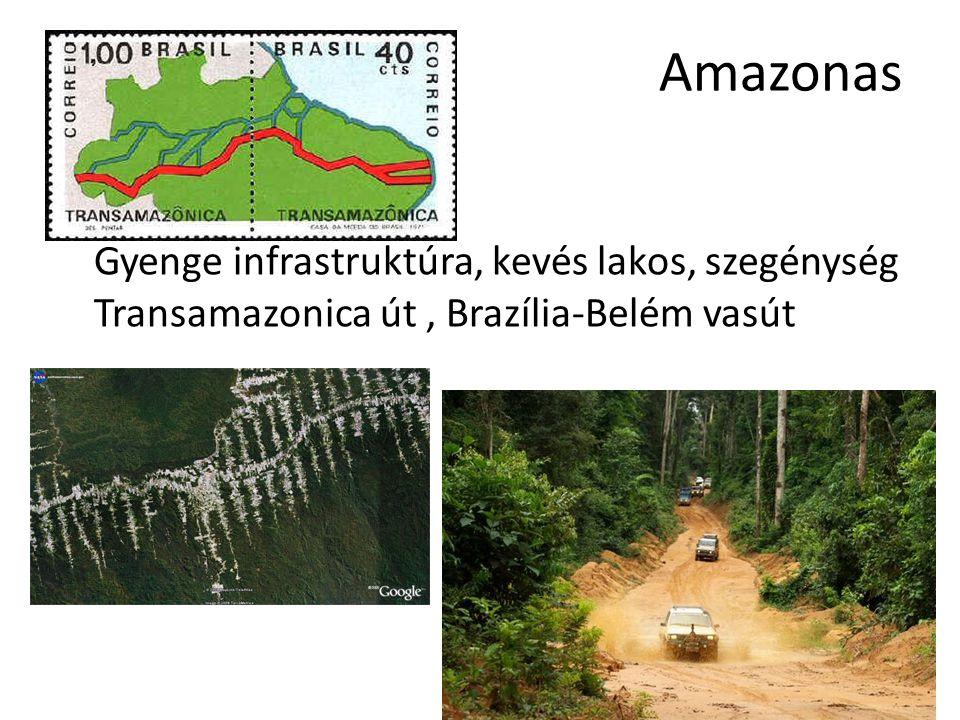 Amazonas Gyenge infrastruktúra, kevés lakos, szegénység Transamazonica út , Brazília-Belém vasút