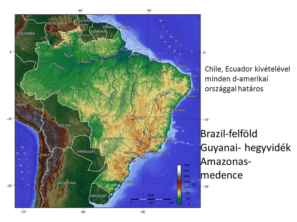 Brazil-felföld Guyanai- hegyvidék Amazonas-medence