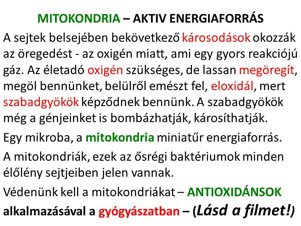 MITOKONDRIA – AKTIV ENERGIAFORRÁS
