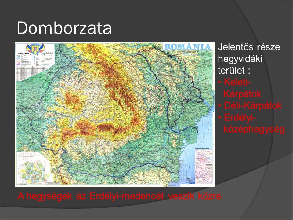 Domborzata Jelentős része hegyvidéki terület : Keleti- Kárpátok