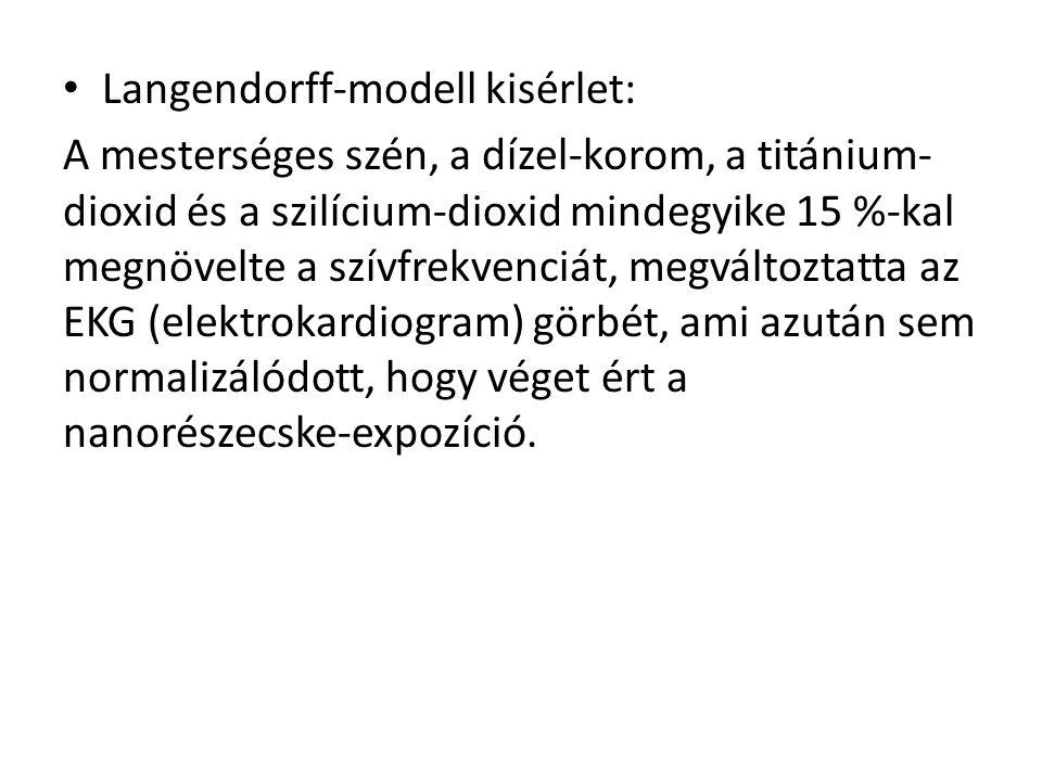 Langendorff-modell kisérlet: