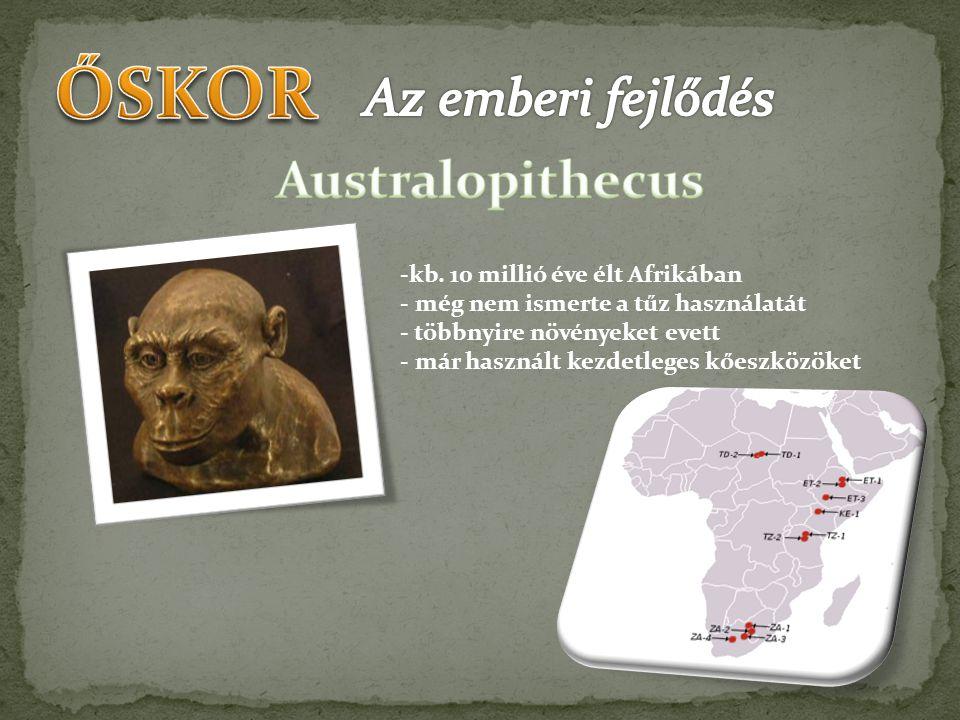 ŐSKOR Az emberi fejlődés Australopithecus