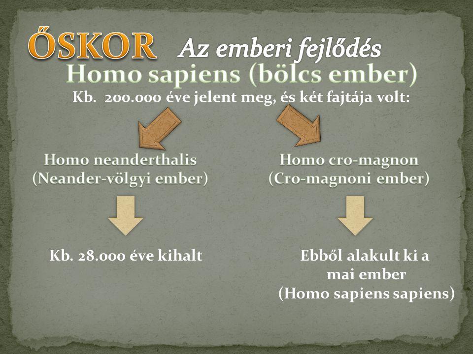 ŐSKOR Az emberi fejlődés Homo sapiens (bölcs ember)