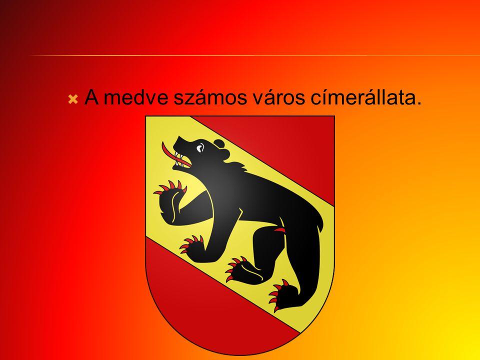A medve számos város címerállata.