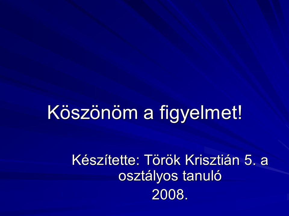 Készítette: Török Krisztián 5. a osztályos tanuló 2008.