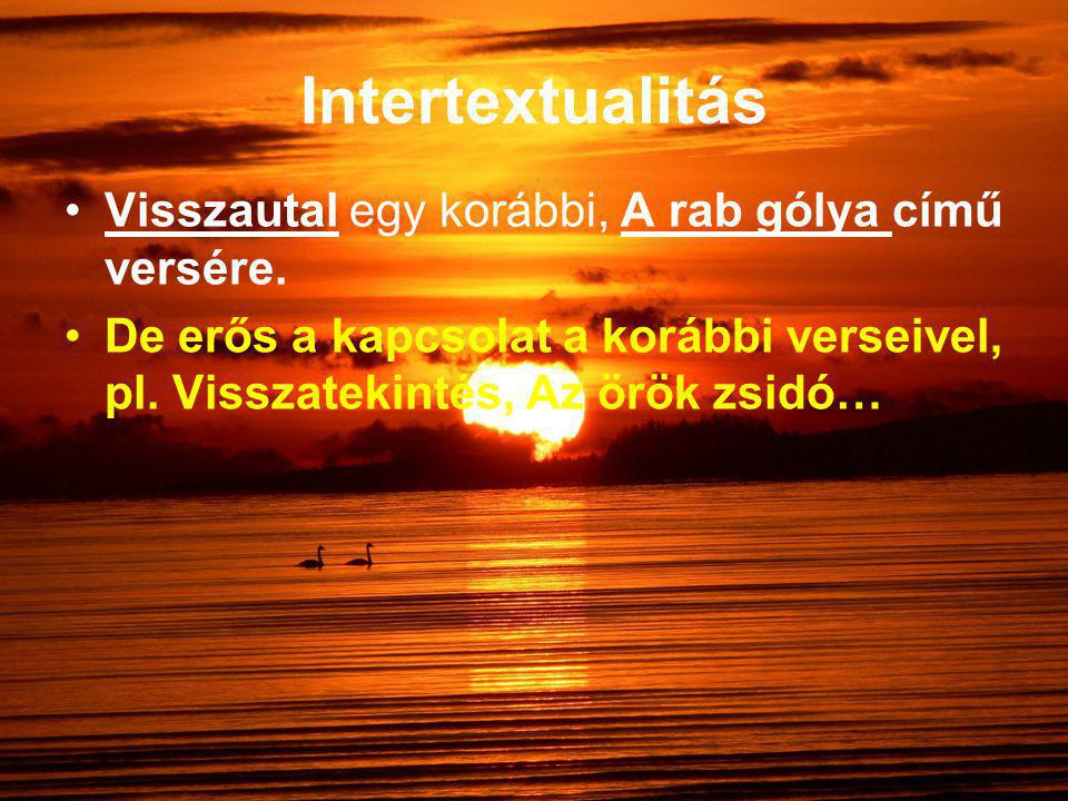 Intertextualitás Visszautal egy korábbi, A rab gólya című versére.