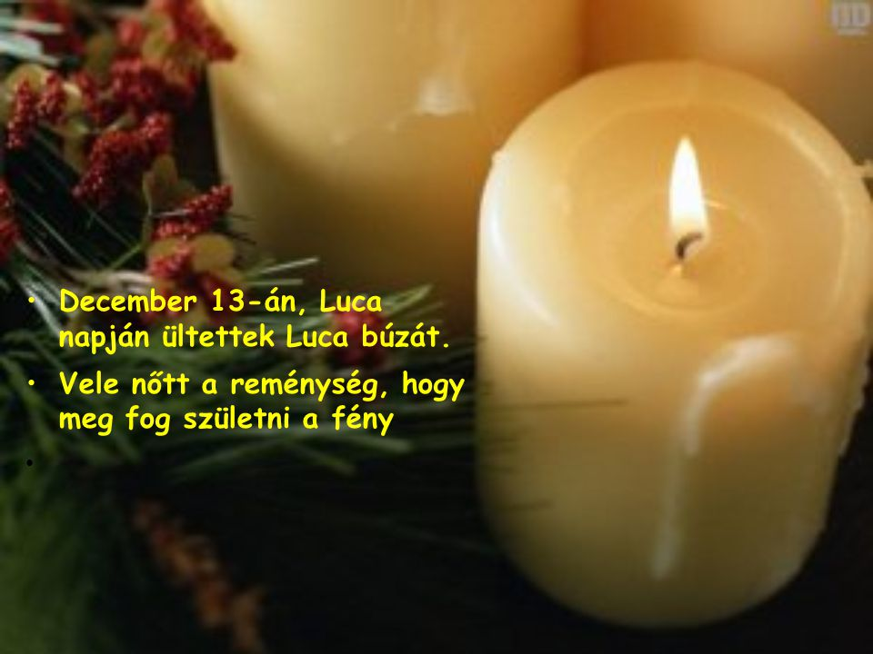December 13-án, Luca napján ültettek Luca búzát.