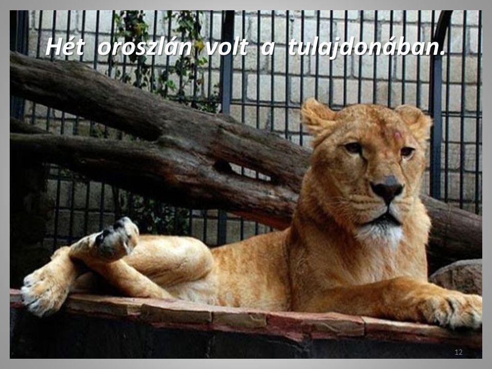 Hét oroszlán volt a tulajdonában.