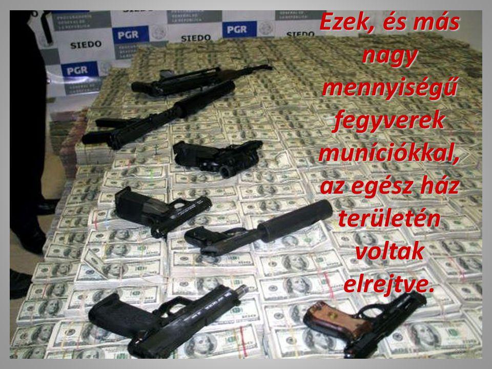 Ezek, és más nagy mennyiségű fegyverek muníciókkal, az egész ház területén voltak elrejtve.