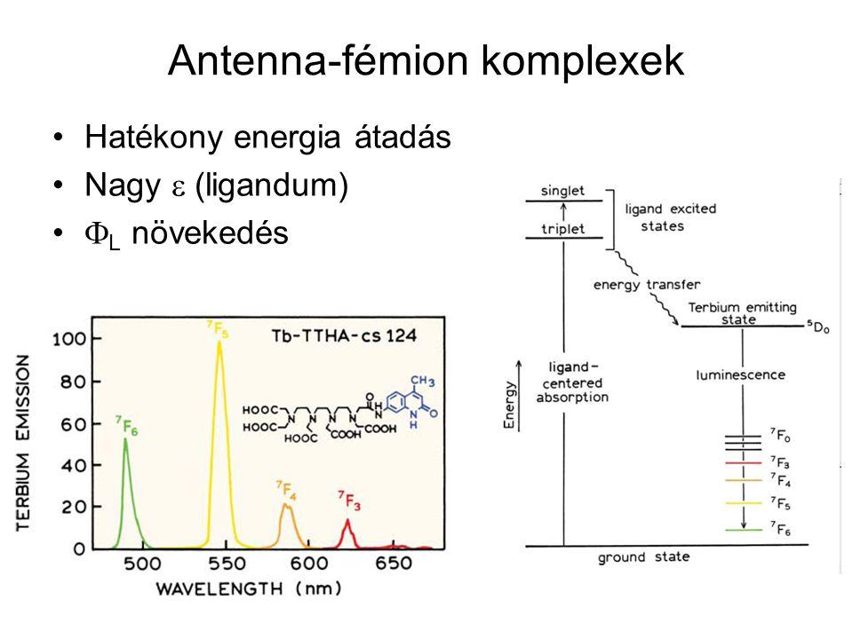 Antenna-fémion komplexek