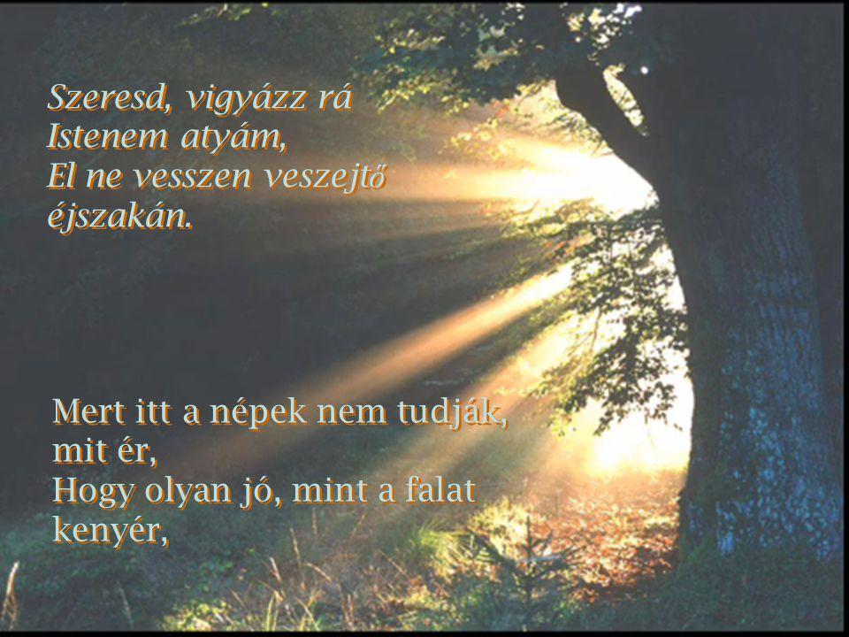 Szeresd, vigyázz rá Istenem atyám, El ne vesszen veszejtő éjszakán. Mert itt a népek nem tudják, mit ér,