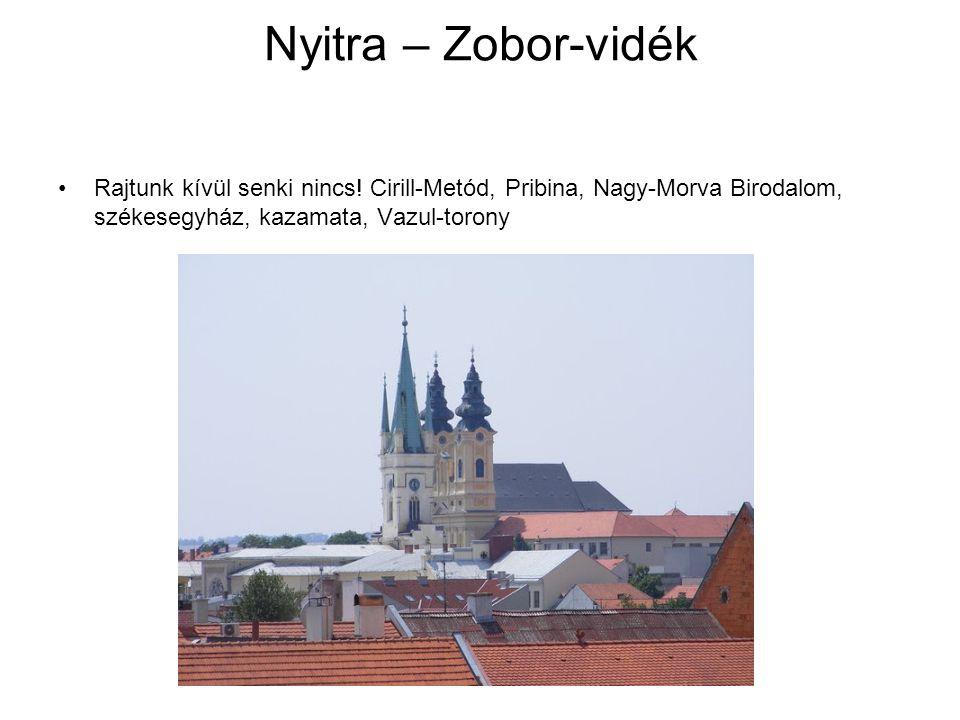 Nyitra – Zobor-vidék Rajtunk kívül senki nincs.