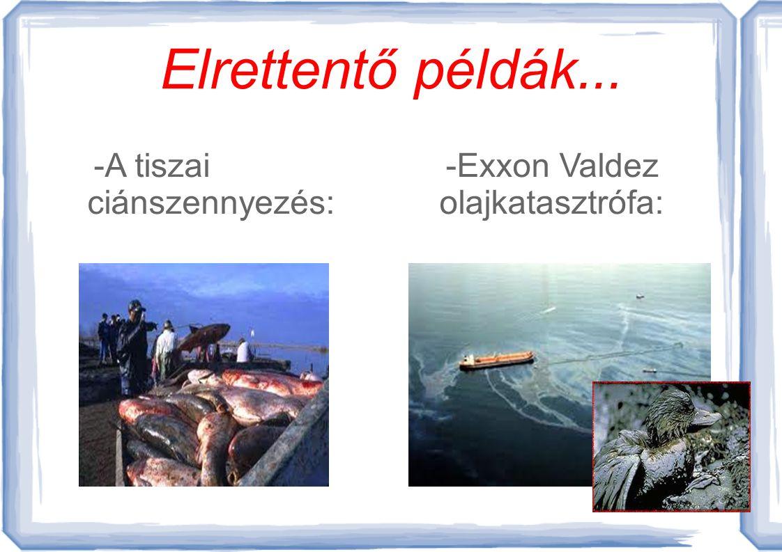 Elrettentő példák... -A tiszai ciánszennyezés: