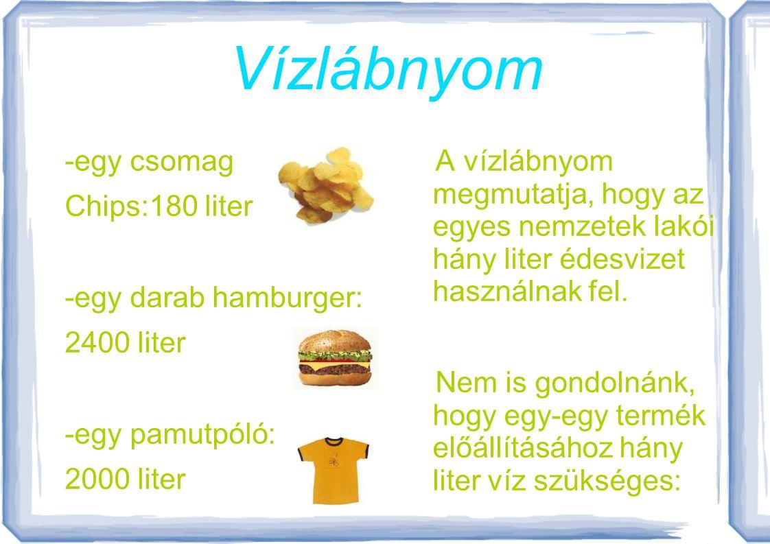 Vízlábnyom -egy csomag Chips:180 liter -egy darab hamburger: