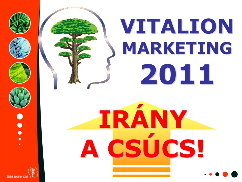 VITALION MARKETING 2011 IRÁNY A CSÚCS!