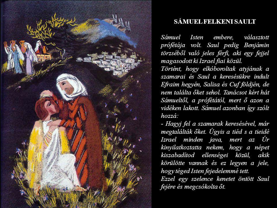 SÁMUEL FELKENI SAULT