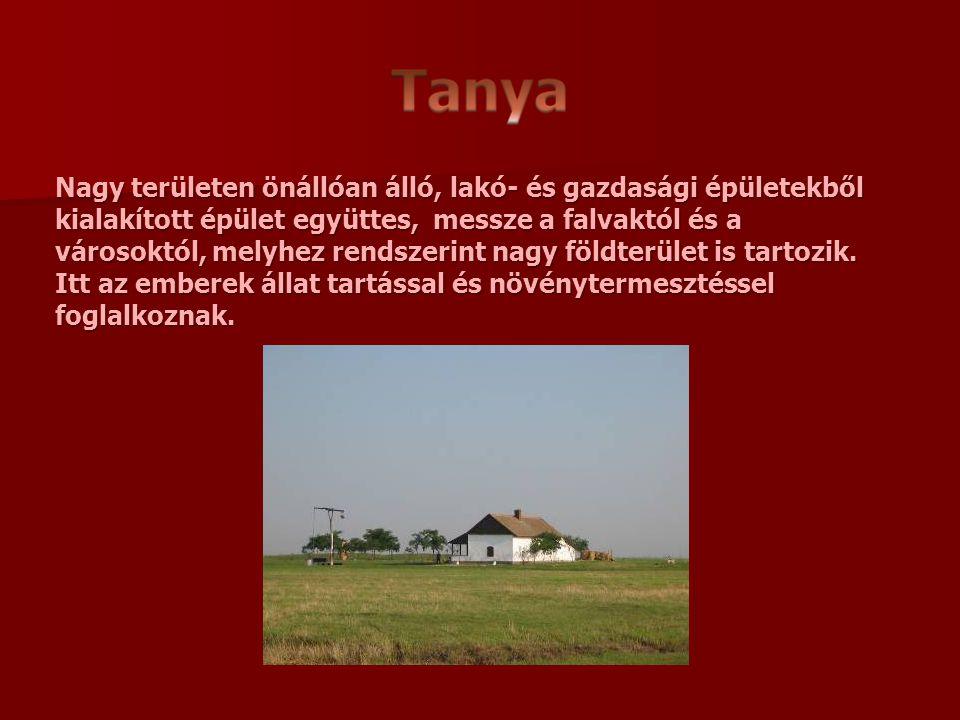 Nagy területen önállóan álló, lakó- és gazdasági épületekből kialakított épület együttes, messze a falvaktól és a városoktól, melyhez rendszerint nagy földterület is tartozik. Itt az emberek állat tartással és növénytermesztéssel foglalkoznak.