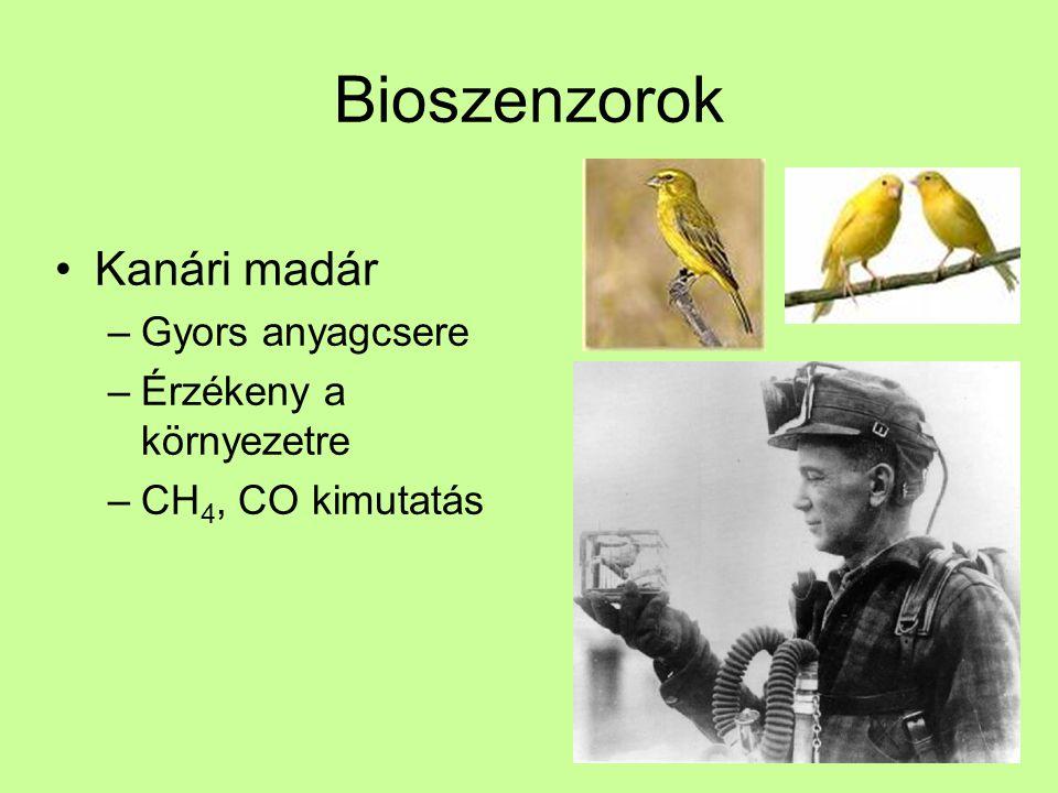 Bioszenzorok Kanári madár Gyors anyagcsere Érzékeny a környezetre