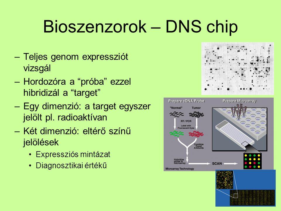 Bioszenzorok – DNS chip