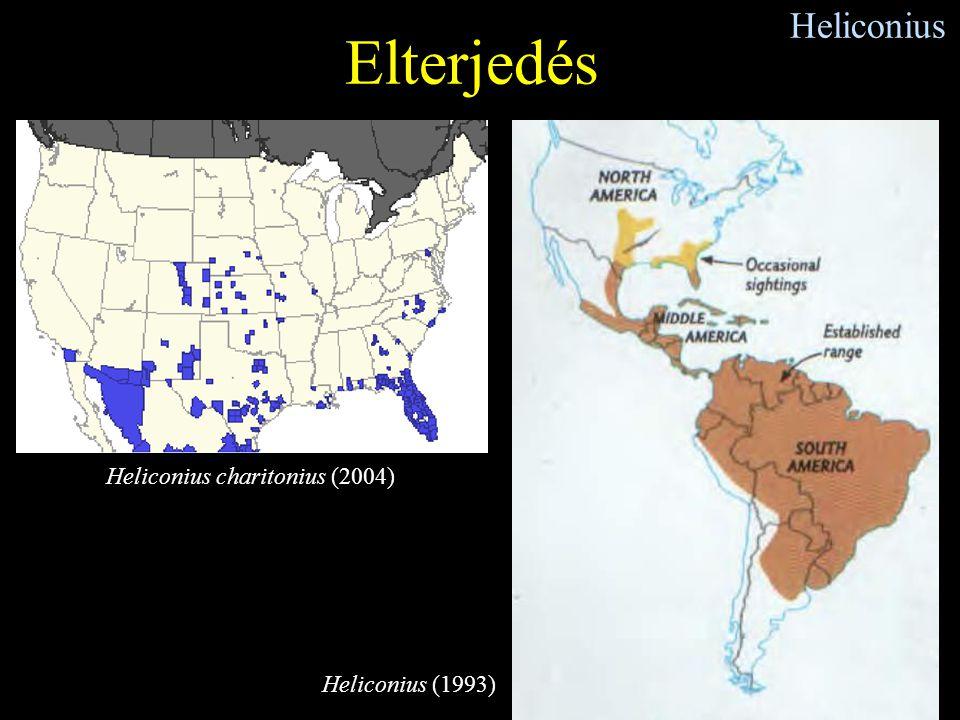 Elterjedés Heliconius Heliconius charitonius (2004) Heliconius (1993)