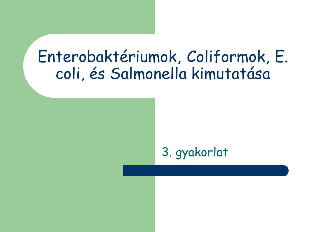 Enterobaktériumok, Coliformok, E. coli, és Salmonella kimutatása