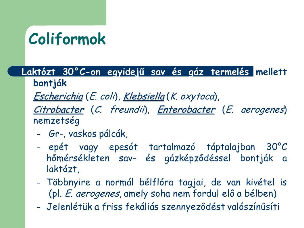 Coliformok Laktózt 30°C-on egyidejű sav és gáz termelés mellett bontják. Escherichia (E. coli), Klebsiella (K. oxytoca),