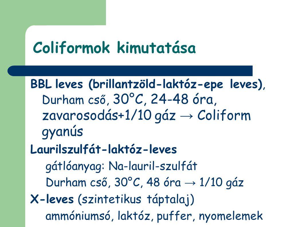 Coliformok kimutatása