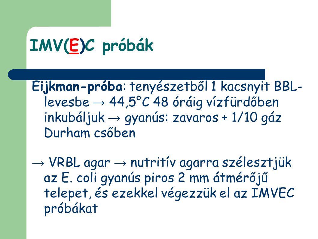 IMV(E)C próbák Eijkman-próba: tenyészetből 1 kacsnyit BBL-levesbe → 44,5°C 48 óráig vízfürdőben inkubáljuk → gyanús: zavaros + 1/10 gáz Durham csőben.