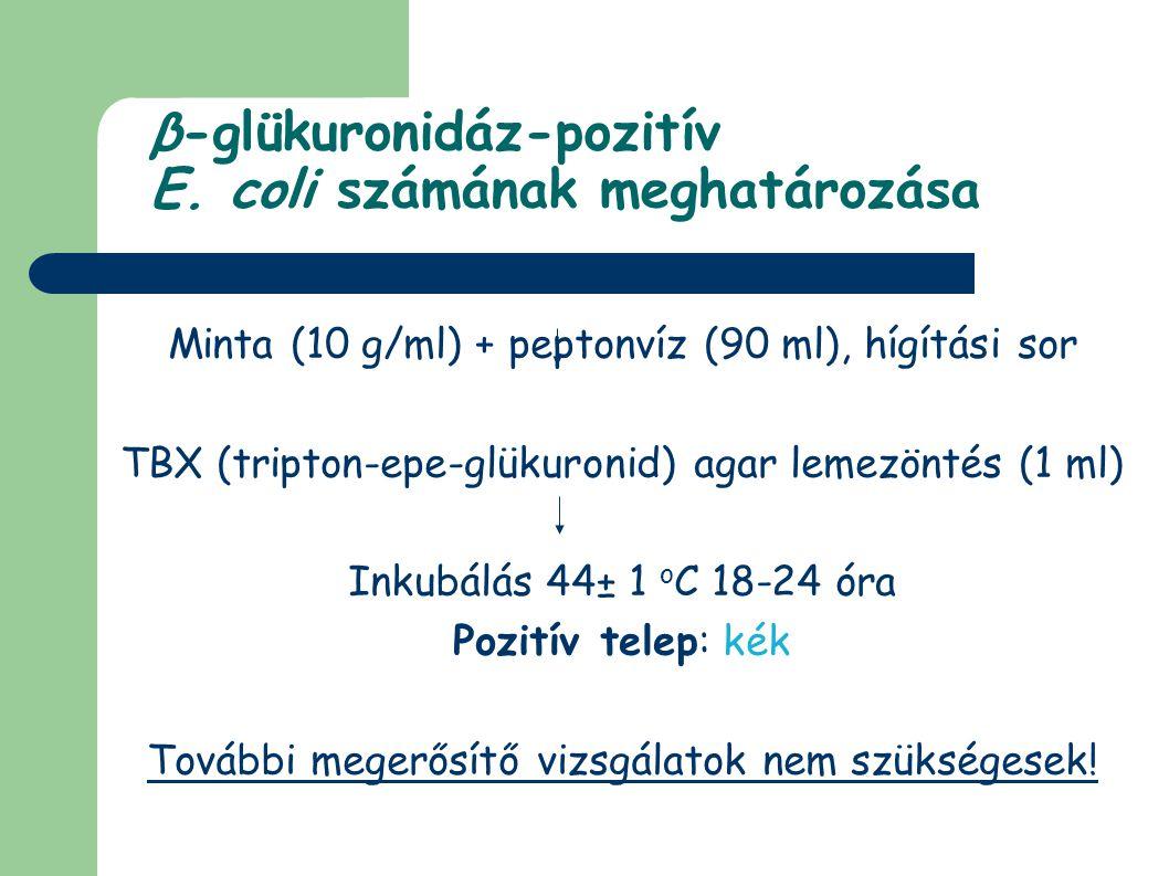 β-glükuronidáz-pozitív E. coli számának meghatározása