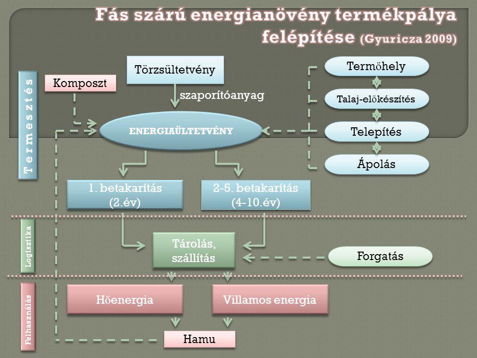 Fás szárú energianövény termékpálya felépítése (Gyuricza 2009)