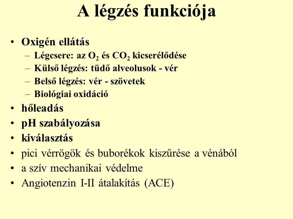 A légzés funkciója Oxigén ellátás hőleadás pH szabályozása kiválasztás