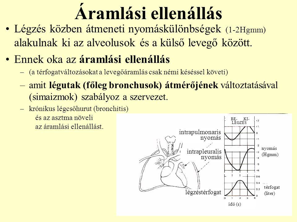 Áramlási ellenállás Légzés közben átmeneti nyomáskülönbségek (1-2Hgmm) alakulnak ki az alveolusok és a külső levegő között.