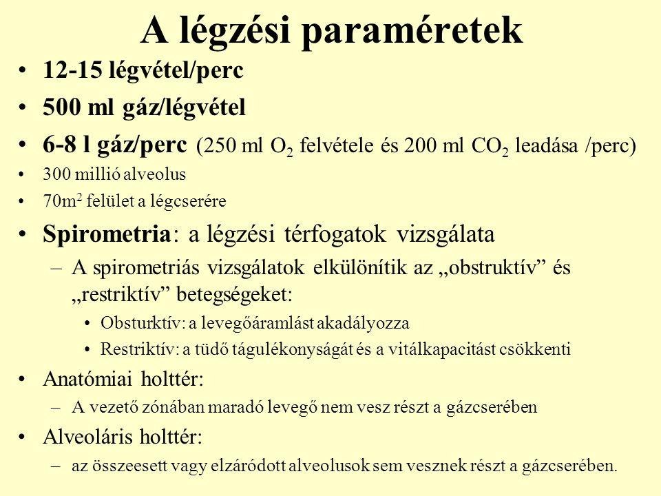A légzési paraméretek 12-15 légvétel/perc 500 ml gáz/légvétel