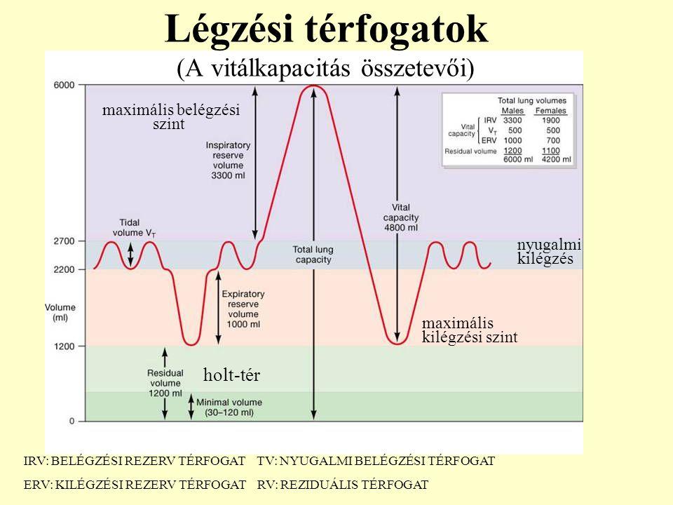 Légzési térfogatok (A vitálkapacitás összetevői)