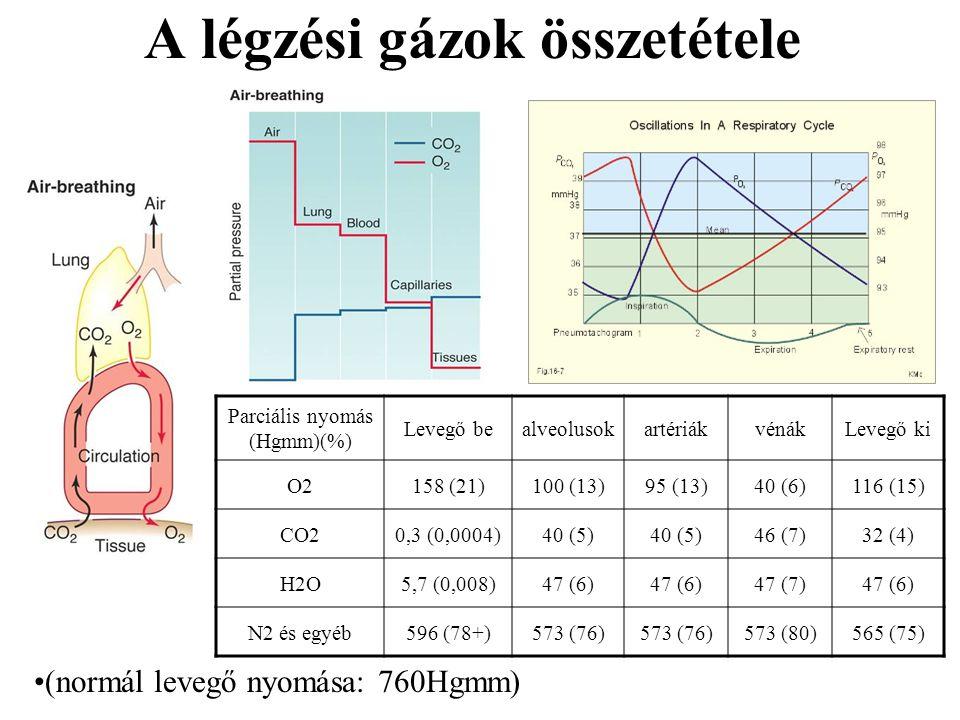 A légzési gázok összetétele