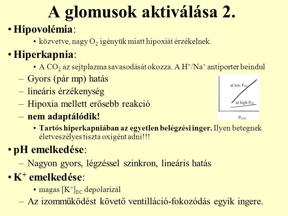 A glomusok aktiválása 2. Hipovolémia: Hiperkapnia: pH emelkedése: