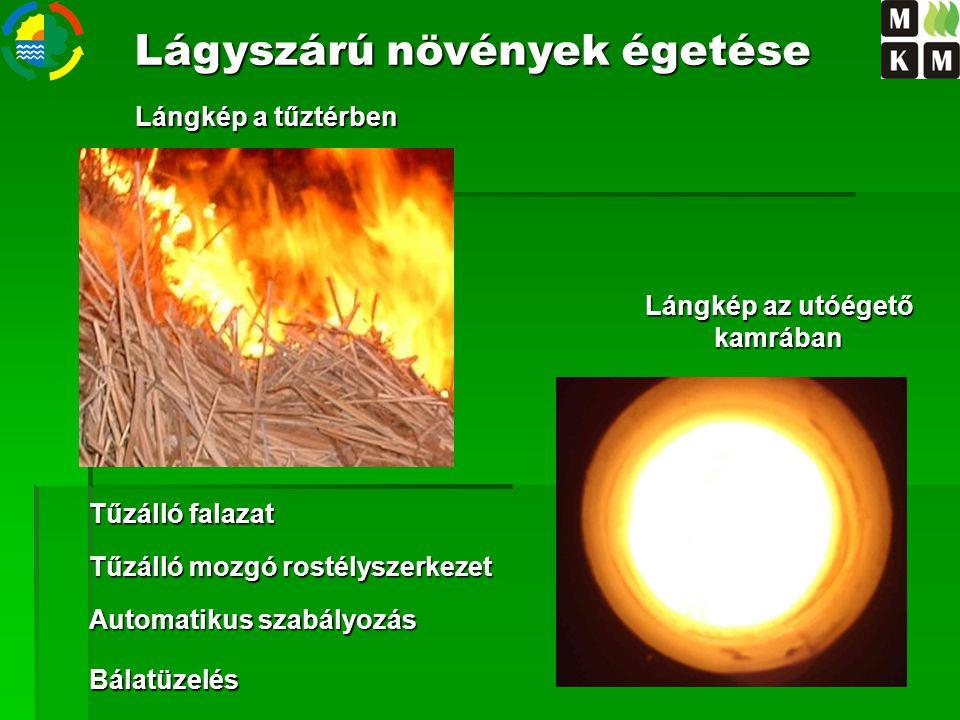 Lágyszárú növények égetése Lángkép az utóégető kamrában